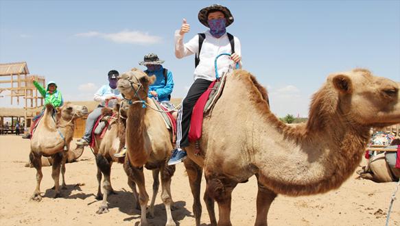 新東方百學匯—騰格里沙漠生存探秘營
