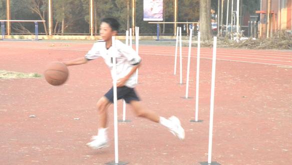 力佳體育—籃球培訓班