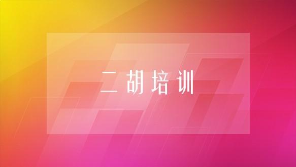 中音藝術學校—二胡培訓班