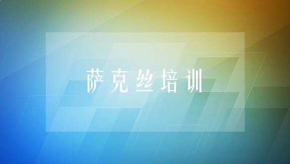 中音艺术学校—萨克丝培训班