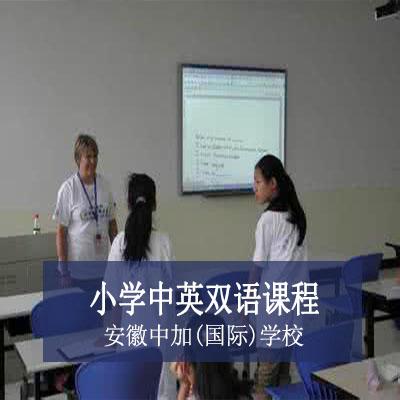 安徽中加(国际)学校小学中英双语课程