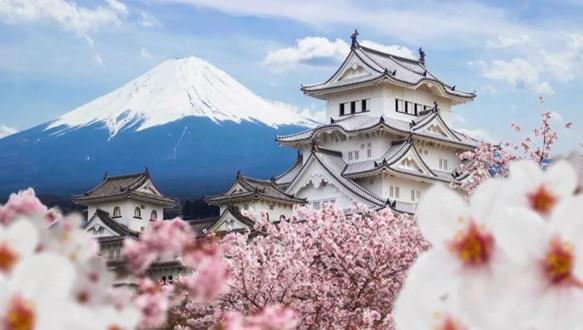 日本TOP50名校直通课程