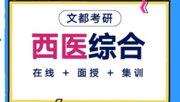 文都考研-306西综综合定向彩虹班