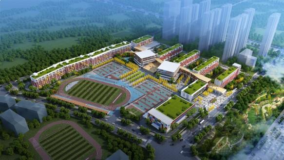 长沙康礼克雷格学校国际高中AP课程