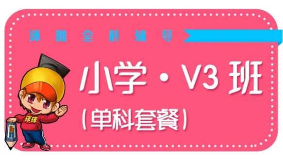 海口環雅小學V3班 (單科套餐)