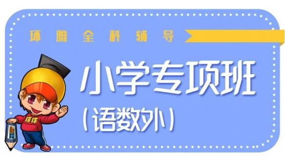 小学6人专项班(语数外)