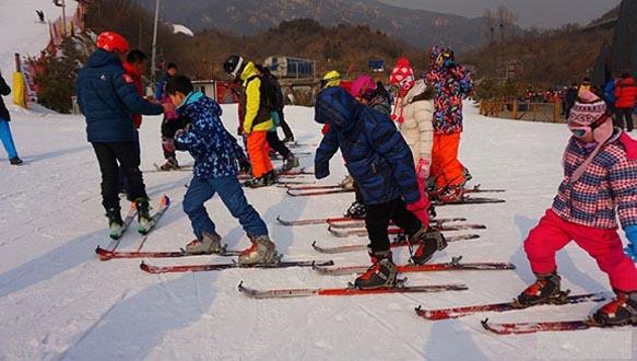 金杯之杰—體育冬令營