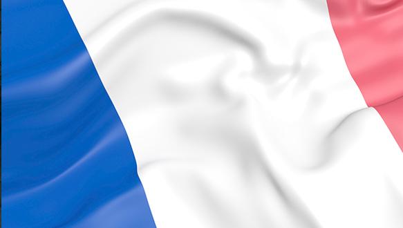 法比加法语自由人十次卡